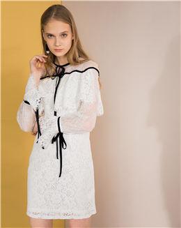 秋季新款喇叭袖中短款蕾丝连衣裙